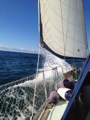 Actually sailing!!!