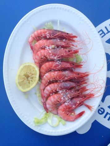 Garrucha red prawns